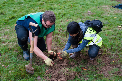 Planting Trees Dartford